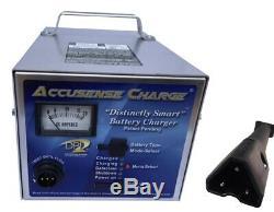 DPI 48 volt 17 amp golf cart battery charger EZ Go RXV connector USA Made